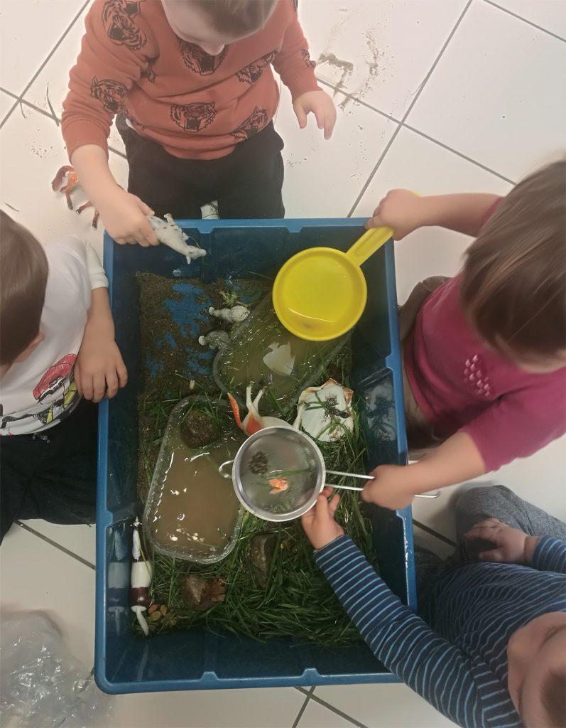 scatola azzurra - contratto di fiume - Elisa Caruso - phd - partecipazione - bambini